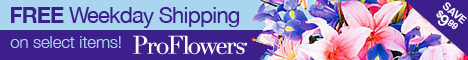 ProFlowers.com, Washington: Order Flowers Online with ProFlowers.com Washington Flowers Service